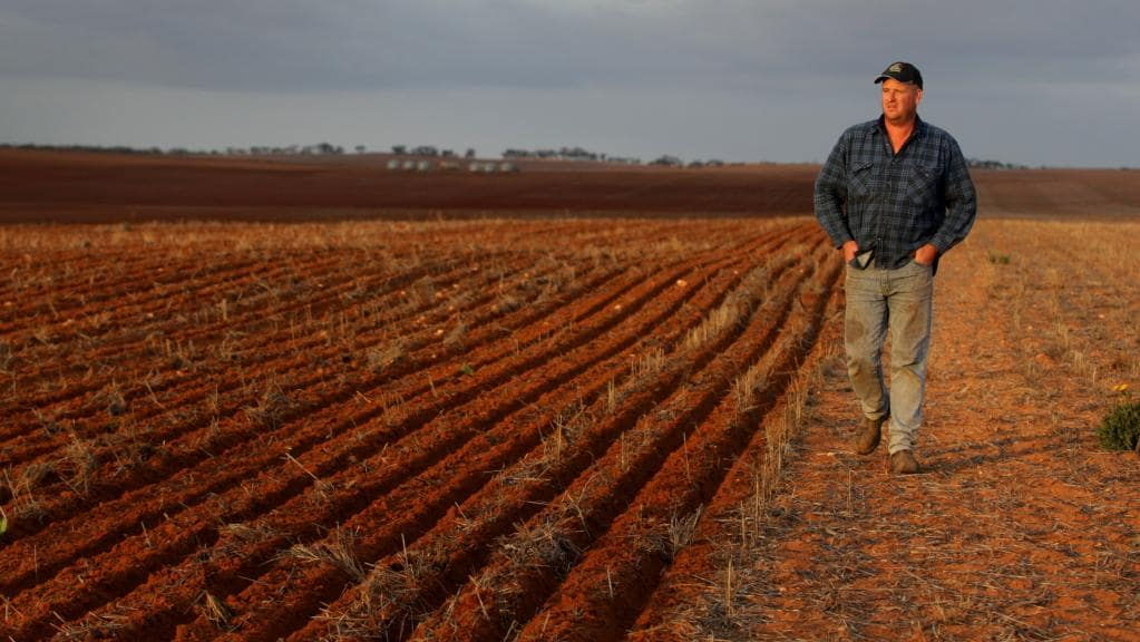We need your help supporting drought affected farmers